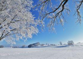Заставки зима, поле, деревья, пейзаж