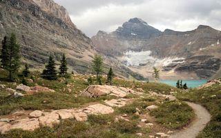 Бесплатные фото тропинка,трава,камни,деревья,озеро,горы,скалы