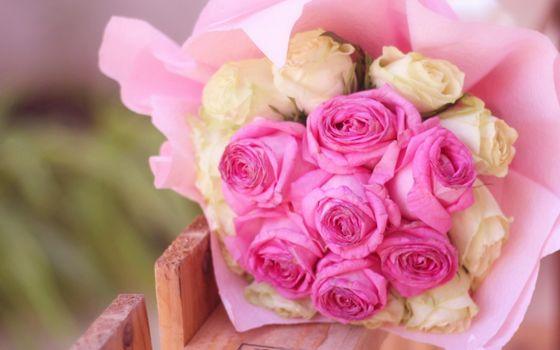 Бесплатные фото цветы,розы,букет,подарок