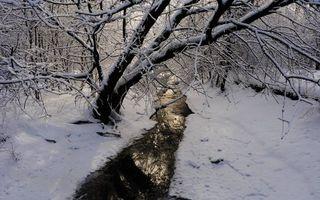 Фото бесплатно зима, снег, речушка