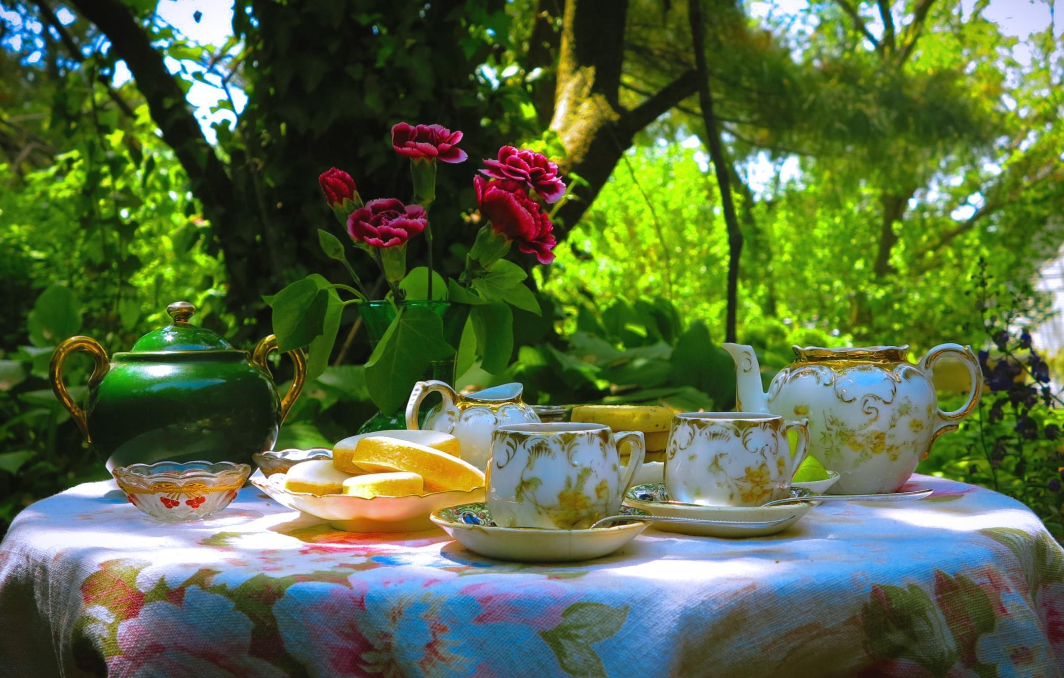 Обои посуда, чай, стол, герань