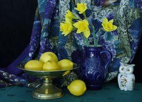 Бесплатные фото ваза,цветы,лимоны,сова,натюрморт