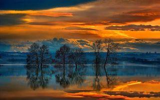 Фото бесплатно озеро, деревья, закат, облака