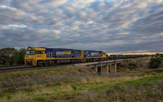 Бесплатные фото поезд грузовой,локомотив,вагоны,железная дорога,мост,деревья,трава