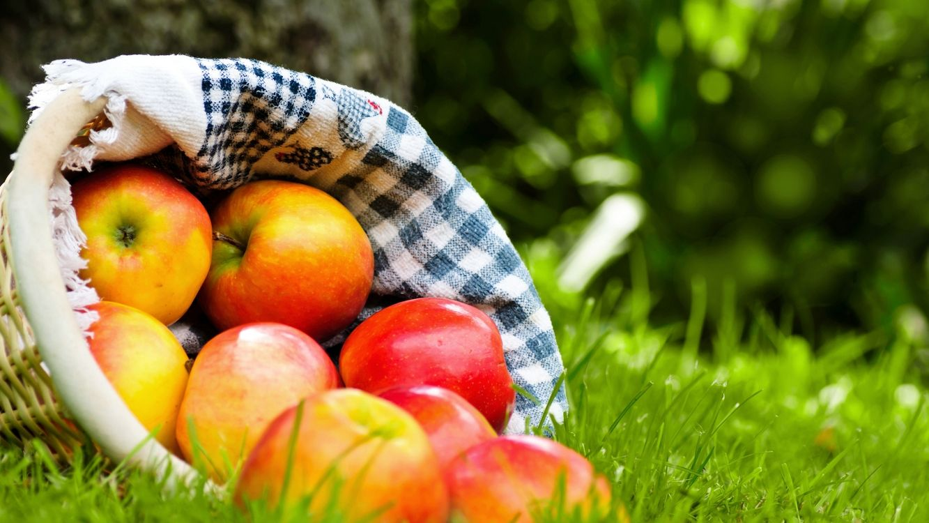 Photos for free basket, towel, fruit - to the desktop