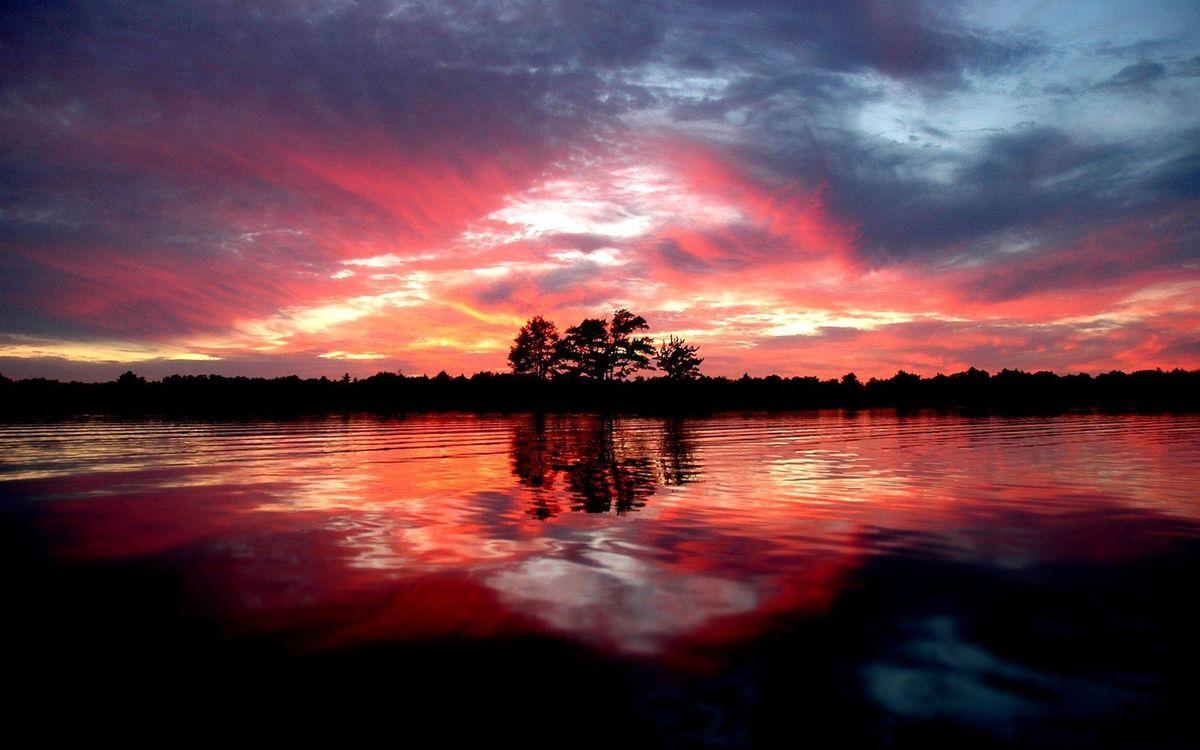 Фото бесплатно озеро, берег, деревья, лес, небо, закат, красный - на рабочий стол