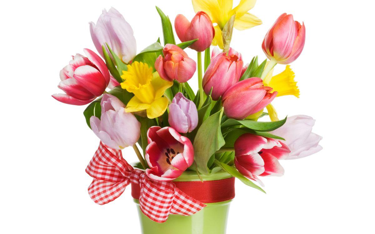 Обои тюльпаны, лепестки, цветные, листья, стебли, ведро, лента, бант на телефон | картинки цветы