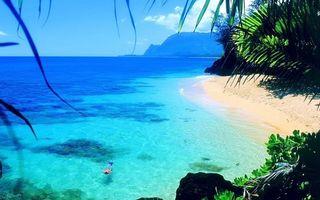 Заставки тропики, острова, берег, растительность, море, плавец, маска, трубка, ласты