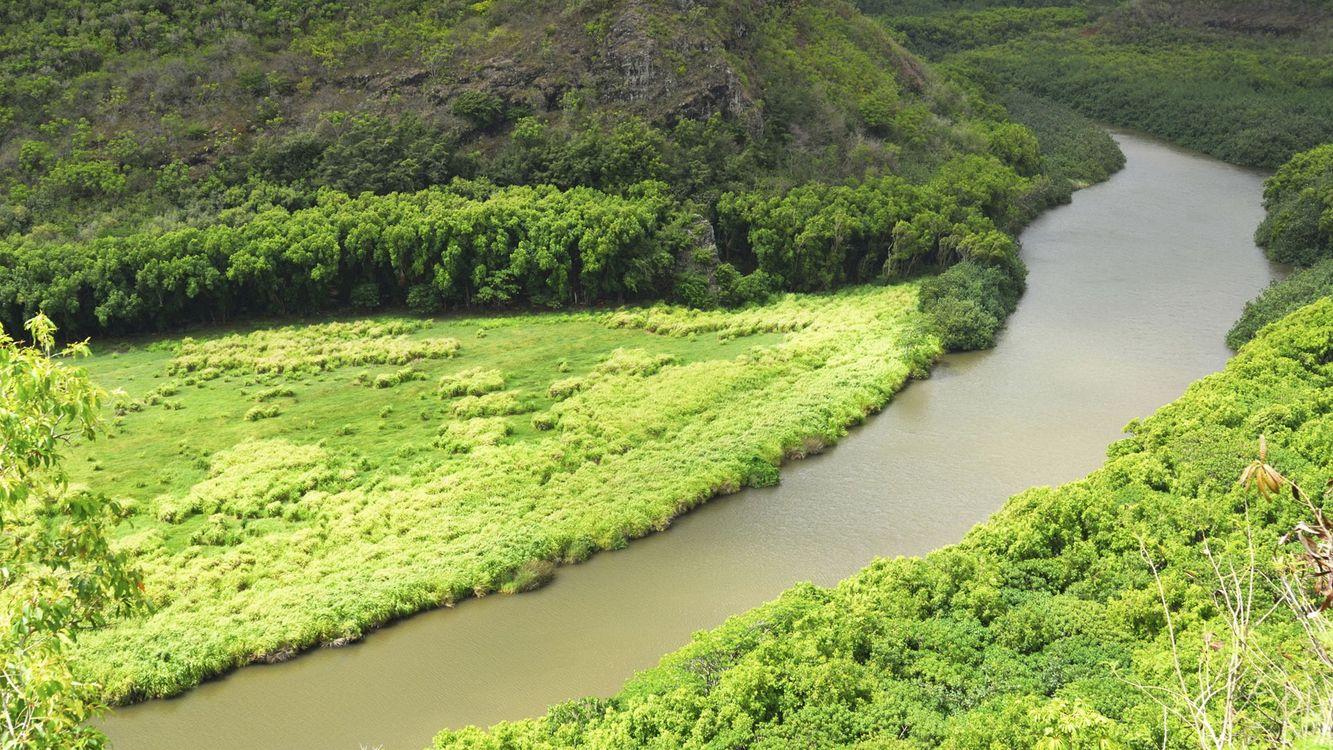 Фото бесплатно лето, река, берега, холмы, трава, кустарник, деревья, природа