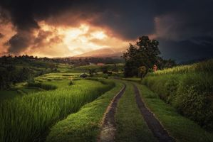 Заставки Индонезия, Бали, восход солнца