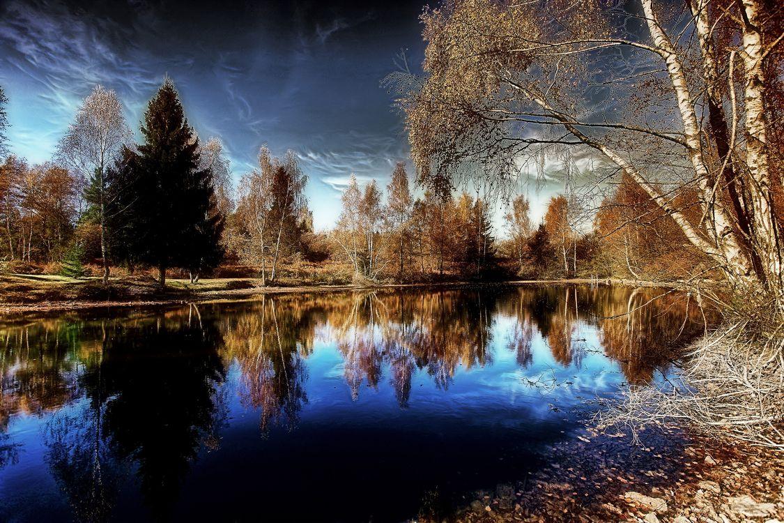 Фото бесплатно осень, пруд, водоём - на рабочий стол