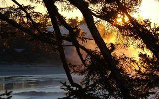 Фото бесплатно река, дымка, деревья