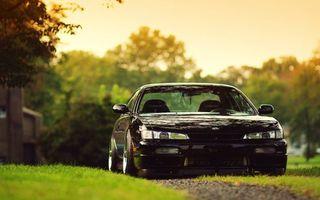 Фото бесплатно черный, трава, дорога