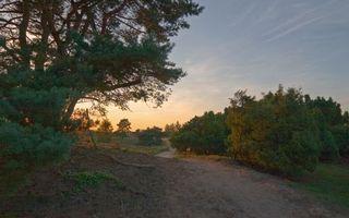 Фото бесплатно тропа, песок, трава