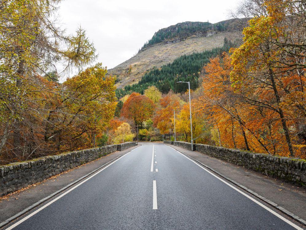 Фото бесплатно Scotland, осень, дорога, деревья, пейзаж, пейзажи