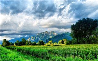 Фото бесплатно дорога, трава, поле, кукуруза, деревья, горы, небо, облака