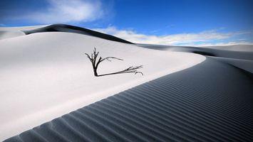 Фото бесплатно пустыня, песок, дюны, барханы, коряга, небо