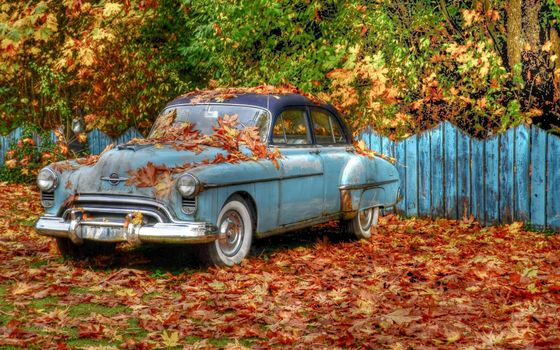 Photo free Oldsmobile, rarity, autumn