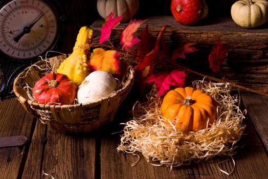 Pictures on a basket, autumn leaves