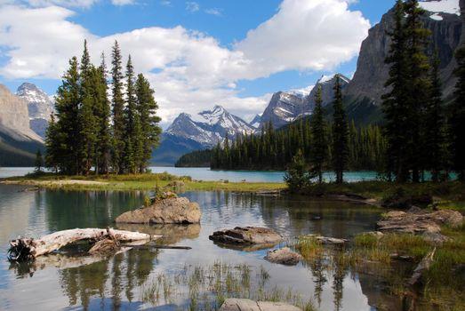 Заставки река, горы, елки