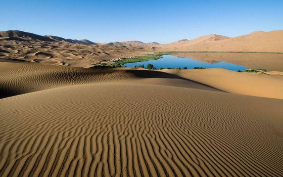 Photo free desert, dunes, barkhans