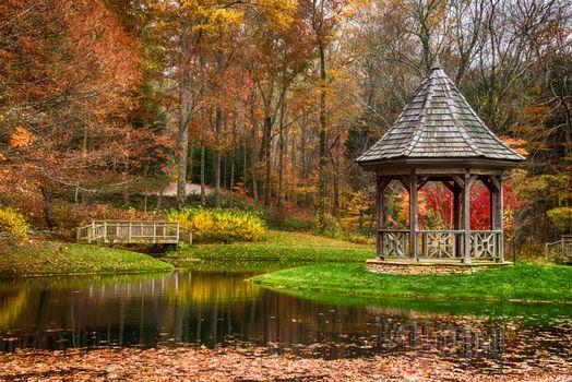 Фото бесплатно осень, парк, пруд, беседка, деревья, пейзаж