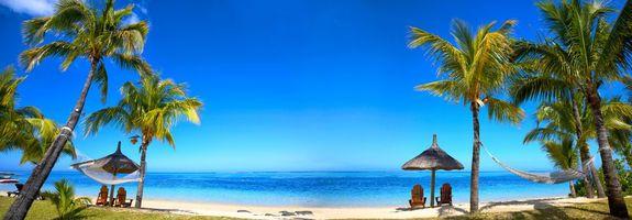 Фото бесплатно море, пальмы, океан