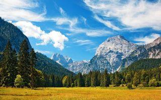 Бесплатные фото предгорье,поле,трава,деревья,лес,горы,скалы
