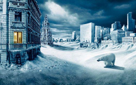 Бесплатные фото город,зима,дома,окна,свет,снег,белый медведь