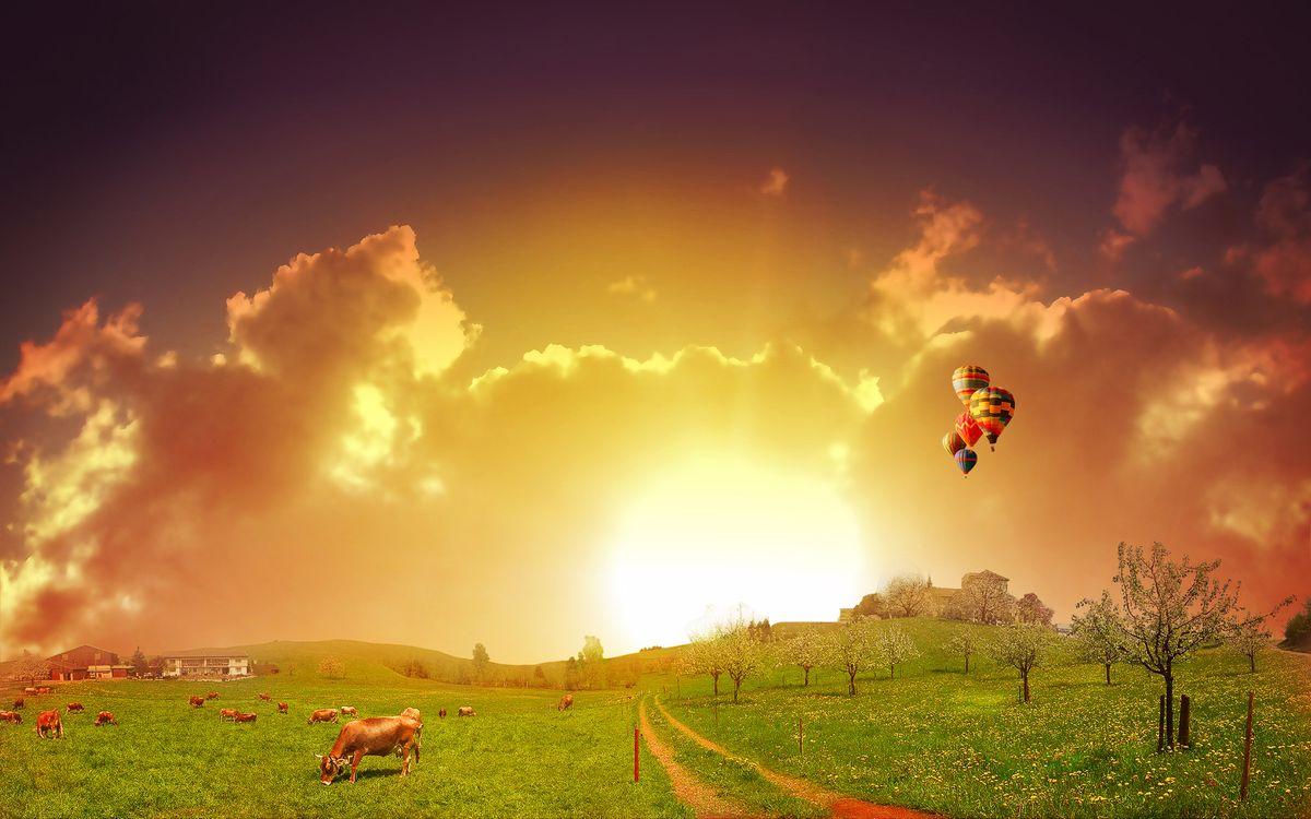 Фото бесплатно поле, пастбище, коровы, дорога, холмы, деревья, дом, воздушные шары, полет, небо, солнце, облака, пейзажи - скачать на рабочий стол