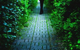 Фото бесплатно тропиннка, брусчатка, человек