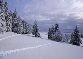 Фото бесплатно путь, зима, сугробы