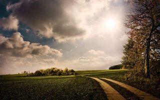 Фото бесплатно поля, дорога, кустарник, деревья, небо, солнце, облака
