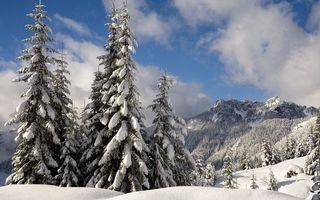 Бесплатные фото зима,горы,деревья,снег,сугробы,небо,облака