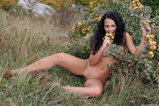 Фото бесплатно Армида, обнаженная девушка, сексуальная девушка