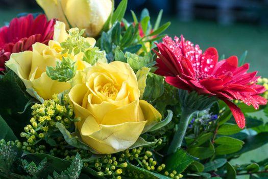 Фото бесплатно цветы, букет, розы