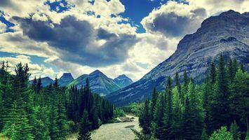 Бесплатные фото река,течение,лес,деревья,горы,скалы,небо