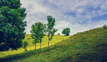 Фото бесплатно пейзаж, деревья, Румыния
