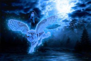 Бесплатные фото ночь,девушка,крылатый волк,фантастика