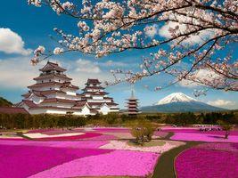 Бесплатные фото Aizuwakamatsu Castle,Tsuruga Castle,Aizuwakamatsu,Fukushima,Japan,Mount Fuji,Замок Аидзувакамацу