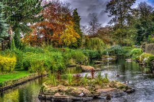 Бесплатные фото сад,парк,пруд,осень,деревья,фонтан,пейзаж