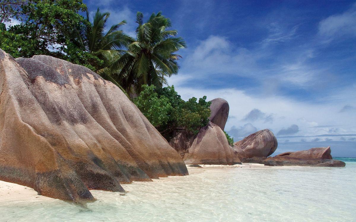 Фото бесплатно остров, тропики, берег, камни, валуны, пальмы, море, небо, природа, пейзажи