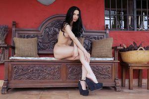 Фото бесплатно Dita V, девушка, модель, красотка, голая, голая девушка, обнаженная девушка, позы, поза, сексуальная девушка, эротика