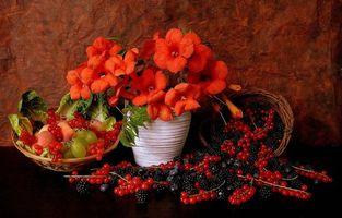 Обои цветы, ягоды, натюрморт