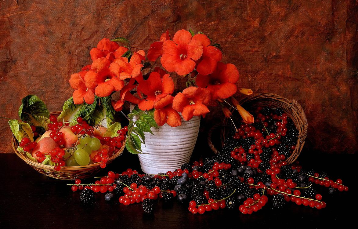 Фото бесплатно цветы, ягоды, натюрморт, цветы
