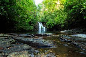 Заставки лес, деревья, водопад, скалы, природа