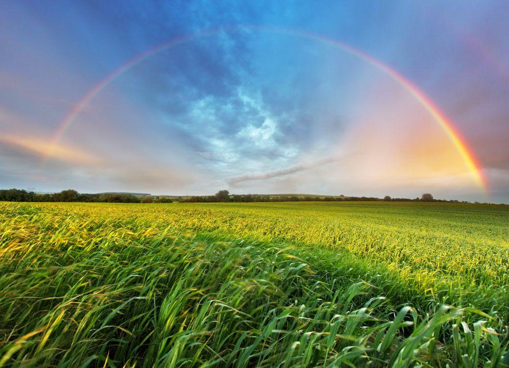 Фото бесплатно радуга и поле, простор - на рабочий стол