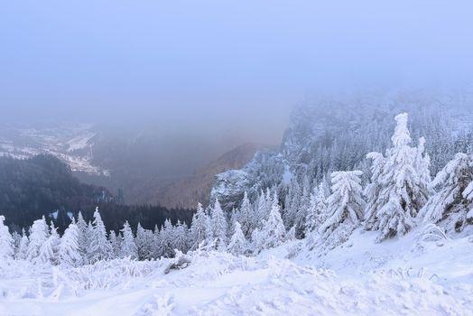 Фото бесплатно Чахлэу, Румыния, зима