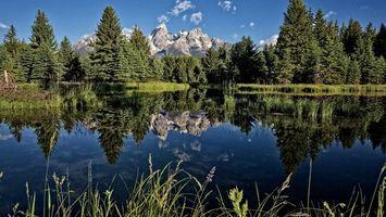 Бесплатные фото озеро,гладь,отражение,деревья,лес,трава,горы