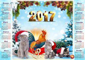 Фото бесплатно Год Красного Огненного Петуха, Fire Cock, Настенный календарь на 2017 год Fire Cock